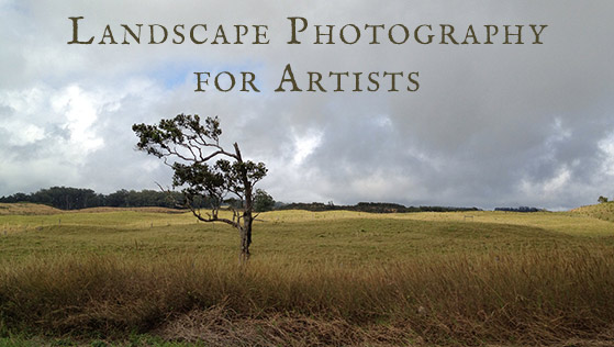 Landscape Photography for Artists